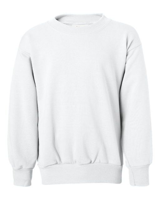 ComfortBlend EcoSmart Youth Sweatshirt
