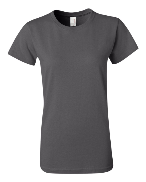 Ladies' Heavyweight T-Shirt