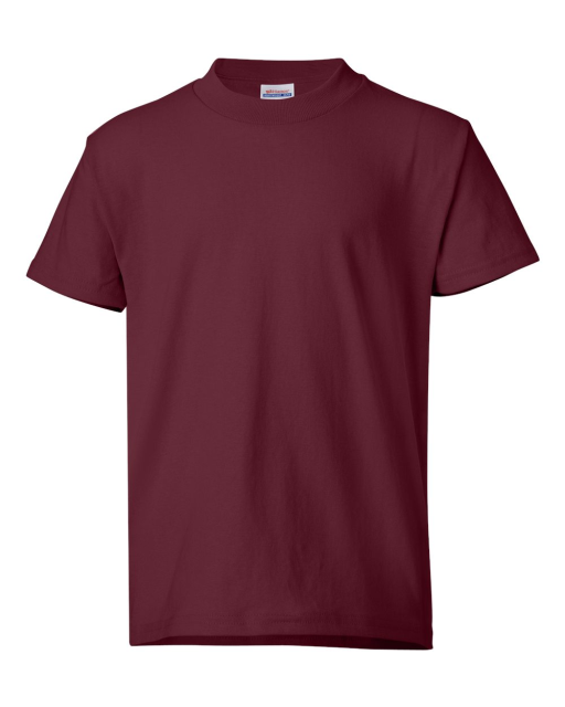 ComfortBlend EcoSmart Youth T-Shirt